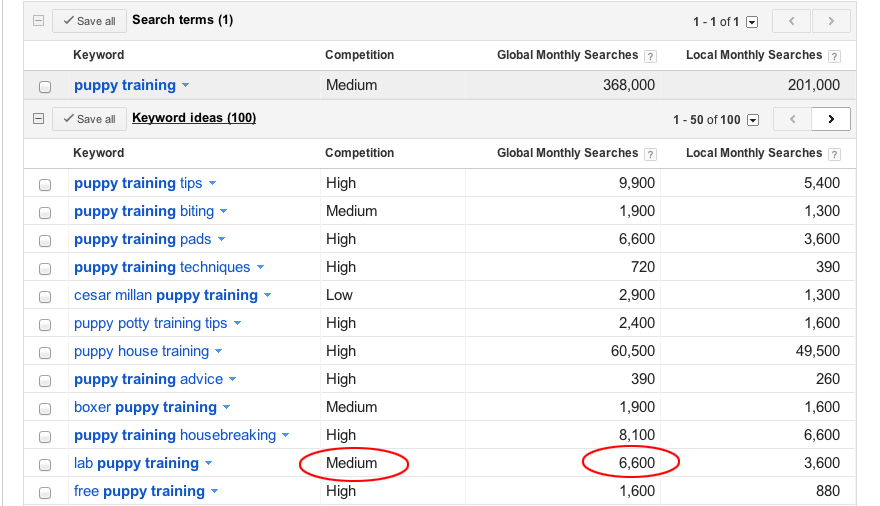 Google Adwords keyword ideas screenshot