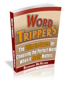 Word-Trippers-3D-Book